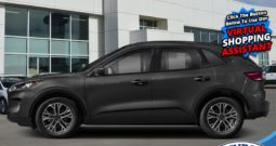 2021 Ford Escape SEL AWD  – $251 B/W